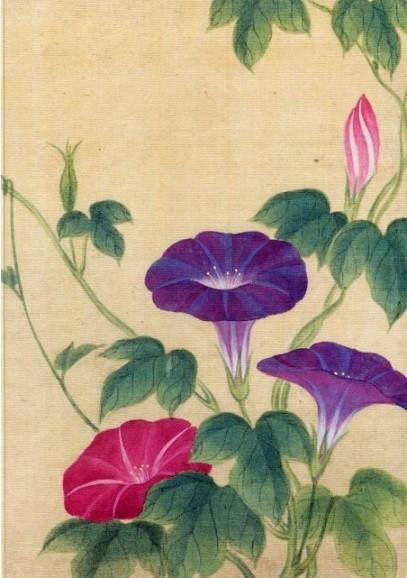 Japanischer Künstler, Trichterwinde