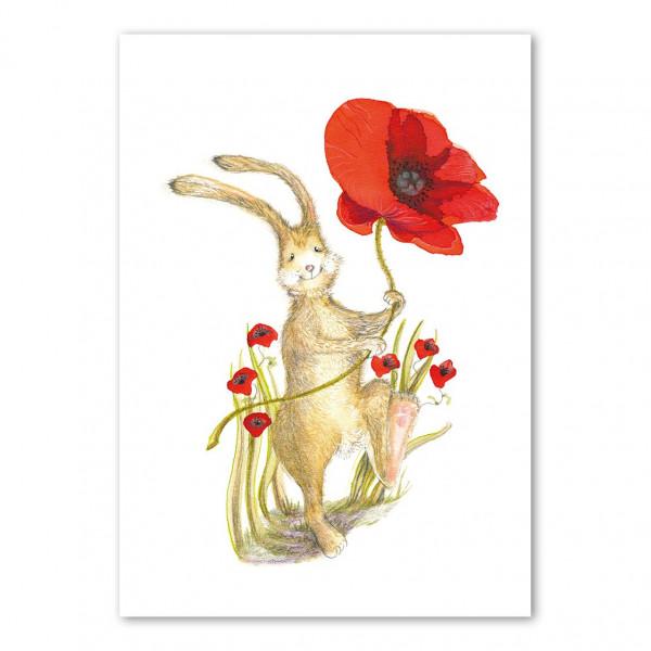 a happy hare