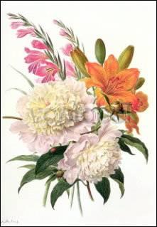 Henriette Gertruide Knip, Gladiolen, Pfingstrosen und Lilien
