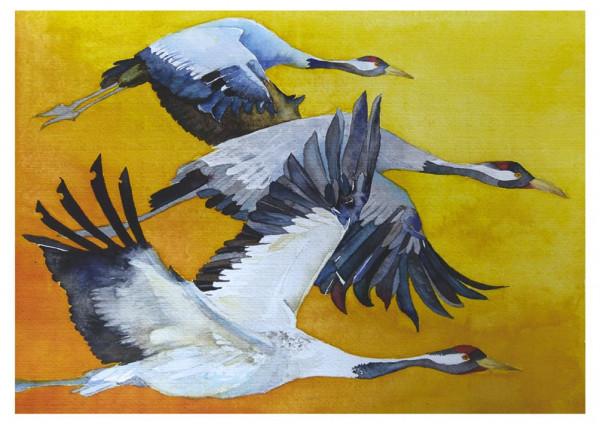 Kraniche-Vögel des Glücks