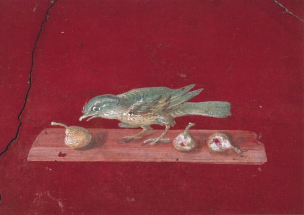 Stilleben mit Vogel und Birne
