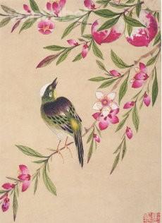 Wang Guochen, Vogel