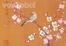 Kwang-Ling, Ku, Vogel auf einem Kirschblütenzweig
