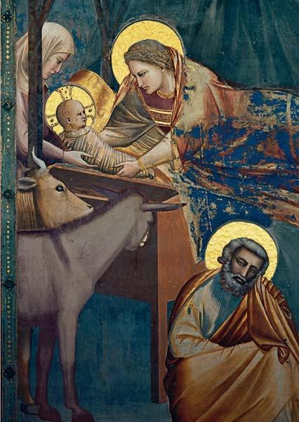 Giotto, Geburt Christi