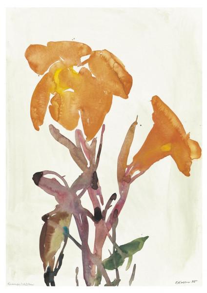 Oskar Koller, Orange Blüten