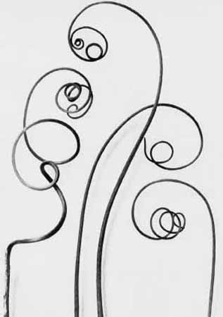 Karl Blossfeldt, Art Forms in Nature