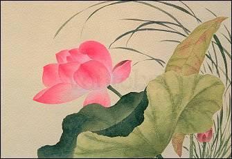 Yun Shou-P'ing, Lotosblüte