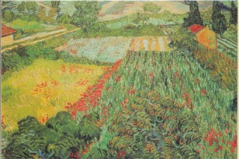 Vincent van Gogh, Mohnfeld bei Saint-Rémy